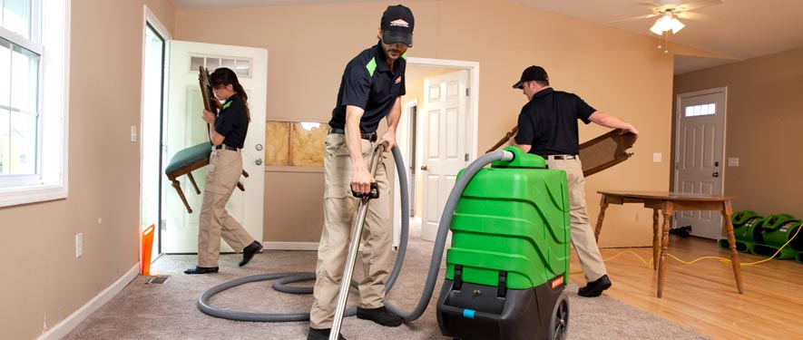 Edgeworth, PA cleaning services